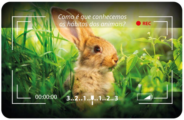 Como é que conhecemos os hábitos dos animais - cartão pessoal do Pedro Silva-Santos