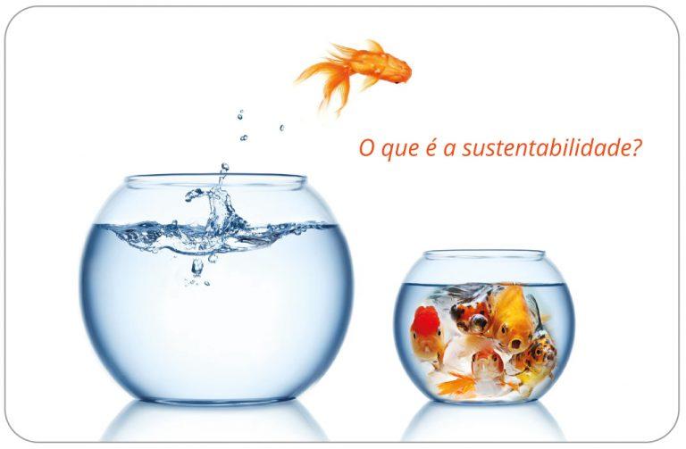 O que é a sustentabilidade - cartão pessoal do Pedro Silva-Santos
