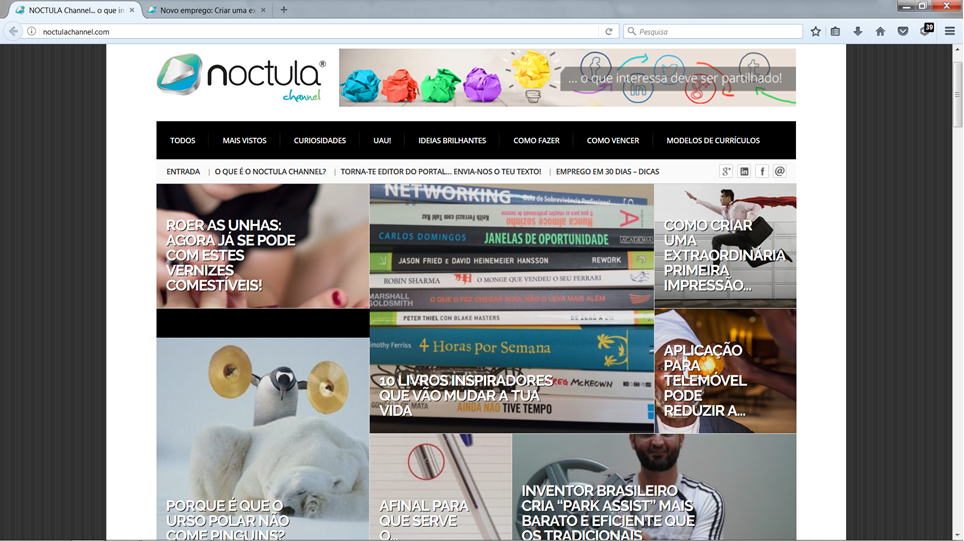 portal NOCTULA Channel